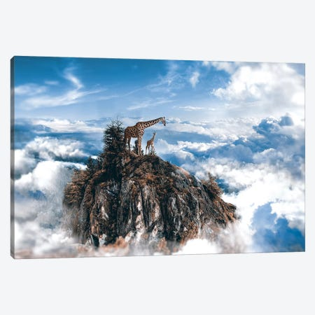 Top Of The World Canvas Print #RYK28} by Shaun Ryken Art Print