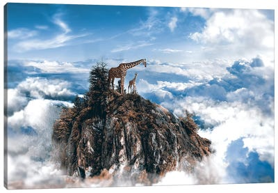 Top Of The World Canvas Art Print