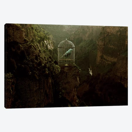 Caged Away Canvas Print #RYK2} by Shaun Ryken Art Print