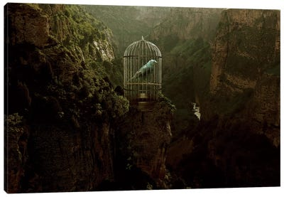 Caged Away Canvas Art Print