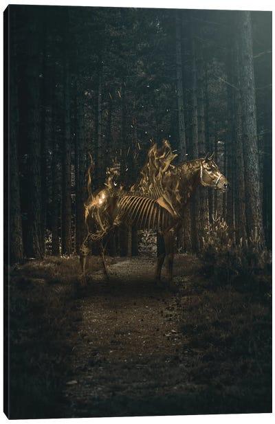 Flaming Horse Canvas Art Print