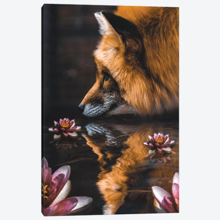 Fox Flower Canvas Print #RYK36} by Shaun Ryken Canvas Print