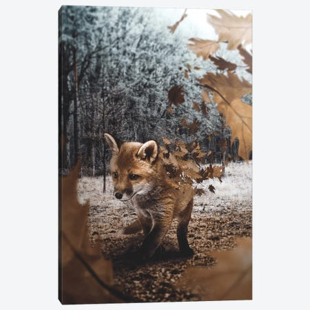 Fox Leaves Canvas Print #RYK37} by Shaun Ryken Canvas Print