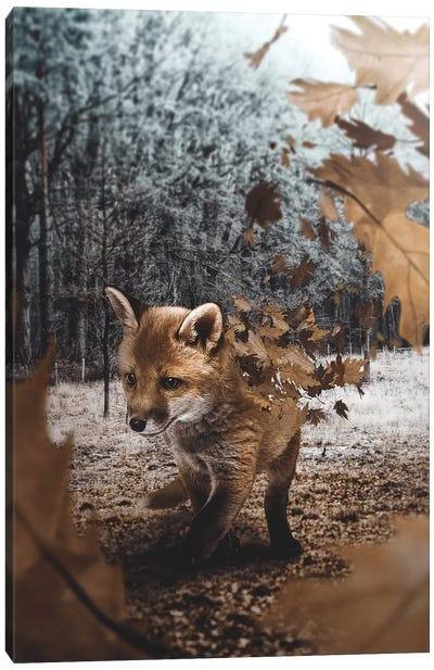 Fox Leaves Canvas Art Print
