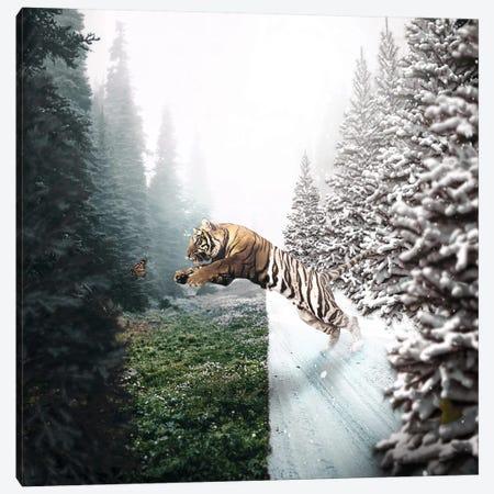 Jumping Tiger Canvas Print #RYK40} by Shaun Ryken Canvas Print