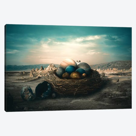 Planet Nest Canvas Print #RYK41} by Shaun Ryken Canvas Art Print