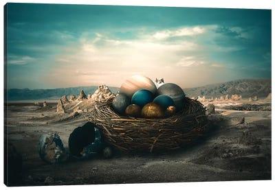 Planet Nest Canvas Art Print