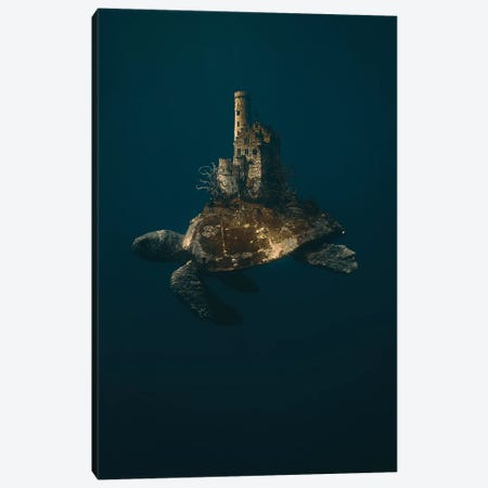 Turtle Ruins Canvas Print #RYK45} by Shaun Ryken Canvas Wall Art