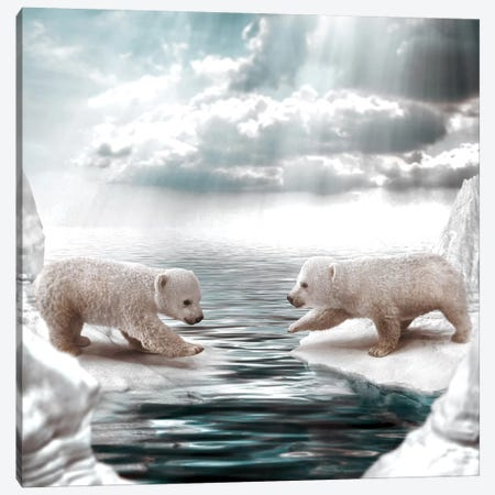 Polar Opposites Canvas Print #RYK47} by Shaun Ryken Canvas Wall Art