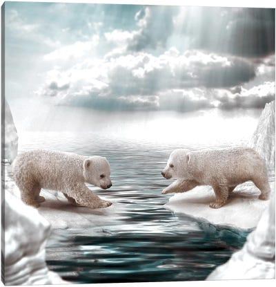 Polar Opposites Canvas Art Print