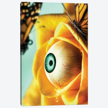 Yellow Crying Flower Canvas Print #RYK49} by Shaun Ryken Art Print