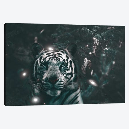 Creeping Tiger Canvas Print #RYK4} by Shaun Ryken Canvas Wall Art
