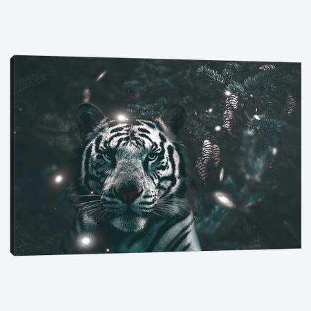 Creeping Tiger Canvas Print #RYK4} by Shaun Ryken Canvas Wall Art