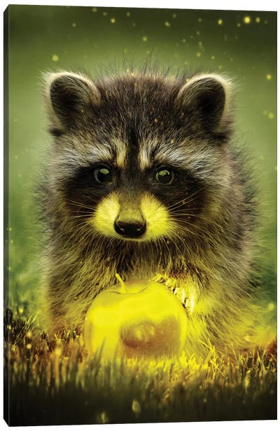 Golden Apple Thief Canvas Art Print