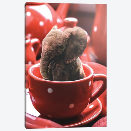 Teacup Elephant Canvas Print #RYK55} by Shaun Ryken Canvas Print