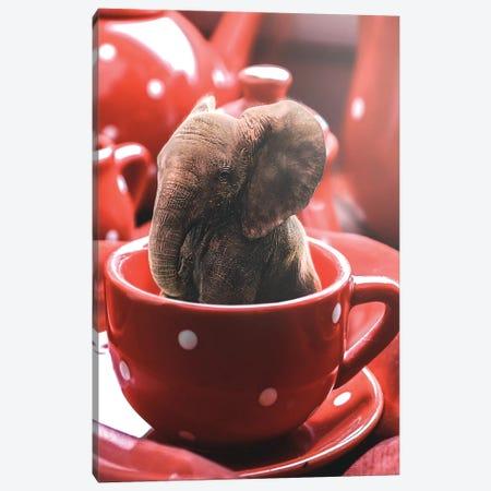 Teacup Elephant Canvas Print #RYK55} by Shaun Ryken Canvas Print