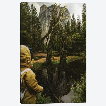 The Tree Giant Canvas Print #RYK58} by Shaun Ryken Canvas Artwork