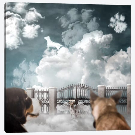Dog Heaven Canvas Print #RYK5} by Shaun Ryken Canvas Wall Art