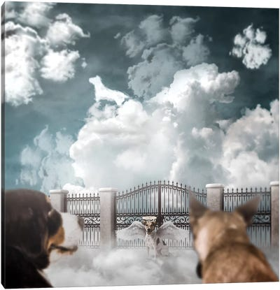 Dog Heaven Canvas Art Print