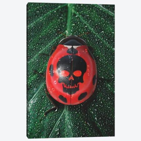 Poisonous Ladybug Canvas Print #RYK63} by Shaun Ryken Art Print