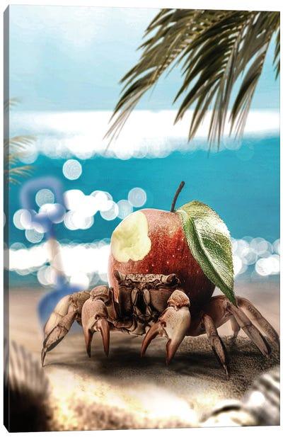 Crab-apple Canvas Art Print