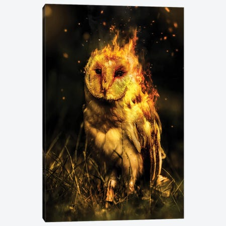 Phowl Canvas Print #RYK68} by Shaun Ryken Canvas Print