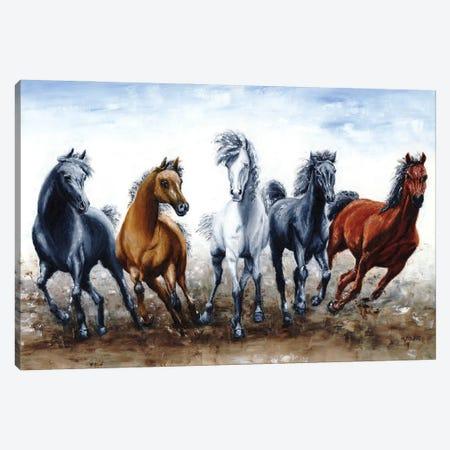 Wild Arabians Canvas Print #RYO103} by Richard Young Canvas Print