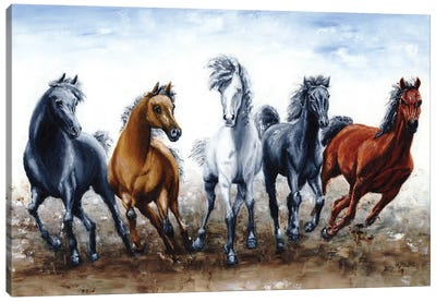 Wild Arabians Canvas Art Print