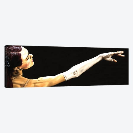 Deathly Seduction Canvas Print #RYO10} by Richard Young Canvas Wall Art