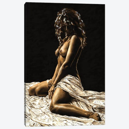 Defiance Canvas Print #RYO11} by Richard Young Canvas Wall Art