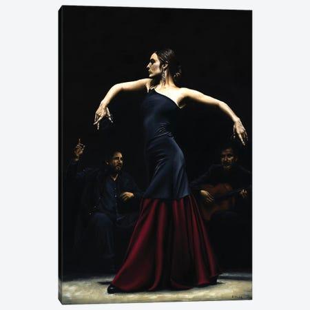Encantado Por Flamenco Canvas Print #RYO13} by Richard Young Canvas Wall Art