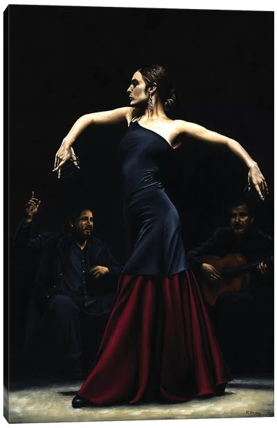 Encantado Por Flamenco by Richard Young Canvas Art Print