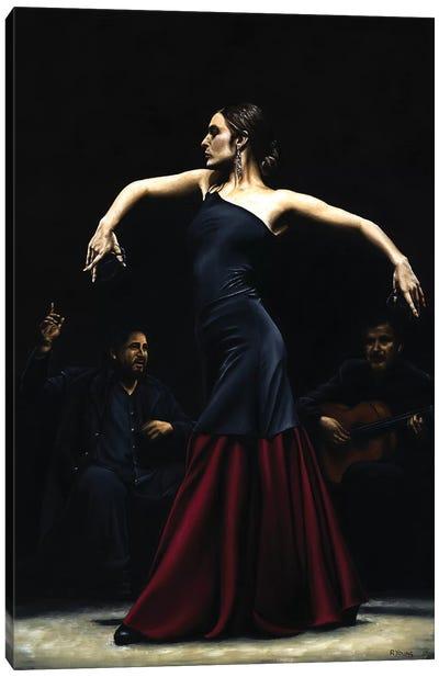 Encantado Por Flamenco Canvas Art Print