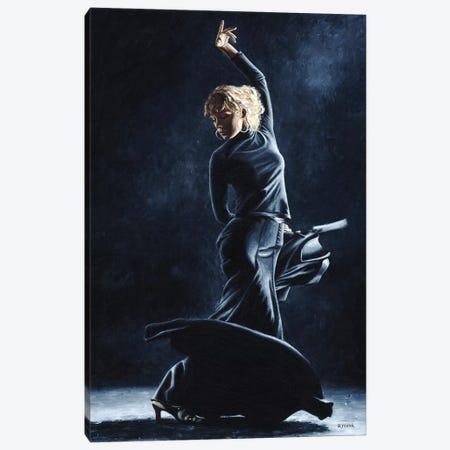 Flamenco Dexterity Canvas Print #RYO18} by Richard Young Canvas Art