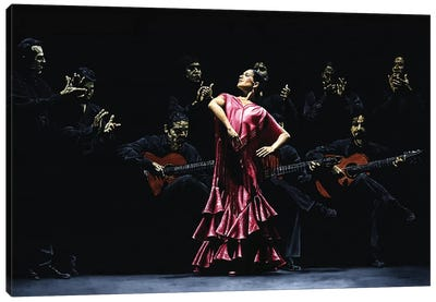 Bailarina Orgullosa Del Flamenco by Richard Young Canvas Art Print