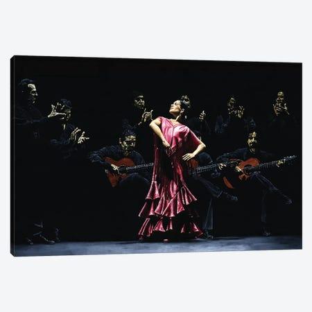 Bailarina Orgullosa Del Flamenco Canvas Print #RYO3} by Richard Young Canvas Print