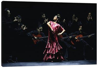 Bailarina Orgullosa Del Flamenco Canvas Art Print