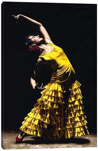 Un Momento Intenso Del Flamenco Canvas Art Print