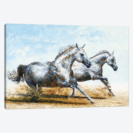 Born Free - Arabian Horses Canvas Print #RYO53} by Richard Young Canvas Artwork