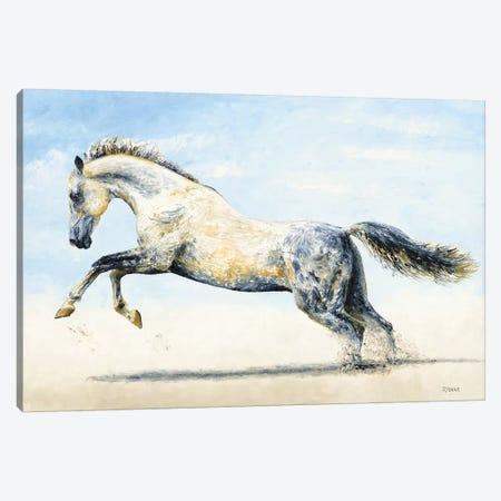 Break Free - Arabian Horse Canvas Print #RYO54} by Richard Young Canvas Print