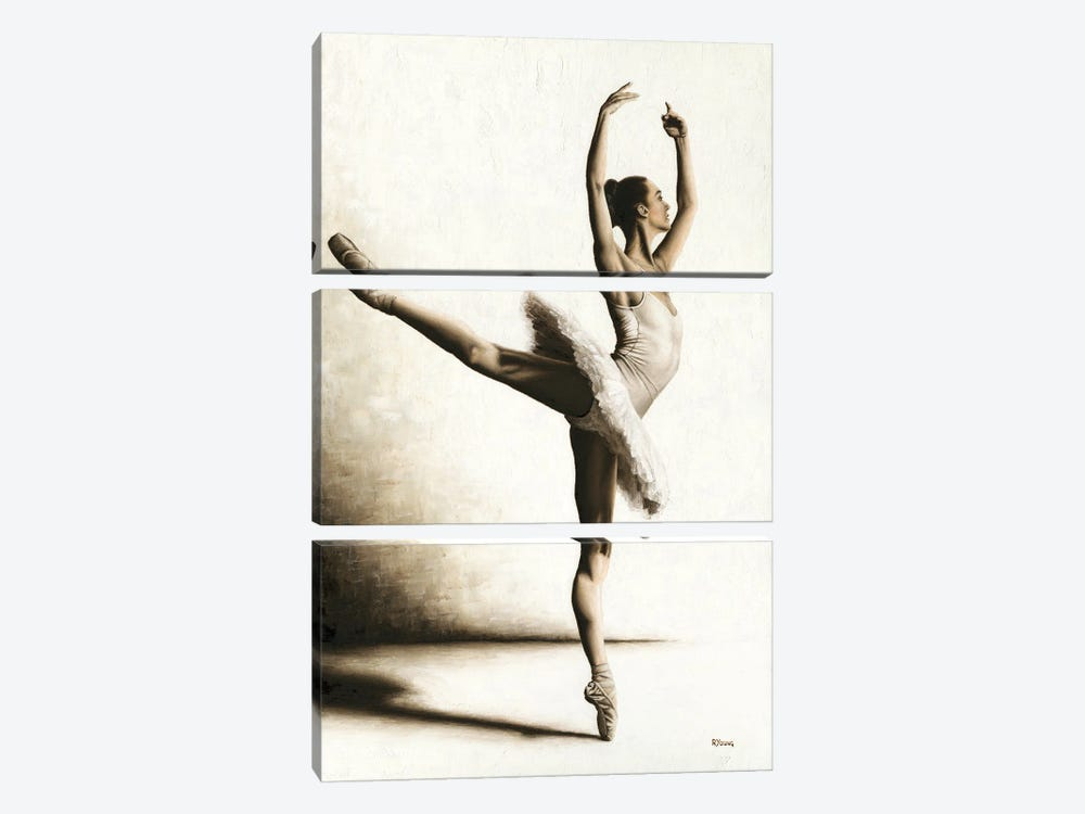 Elegance by Richard Young 3-piece Canvas Wall Art