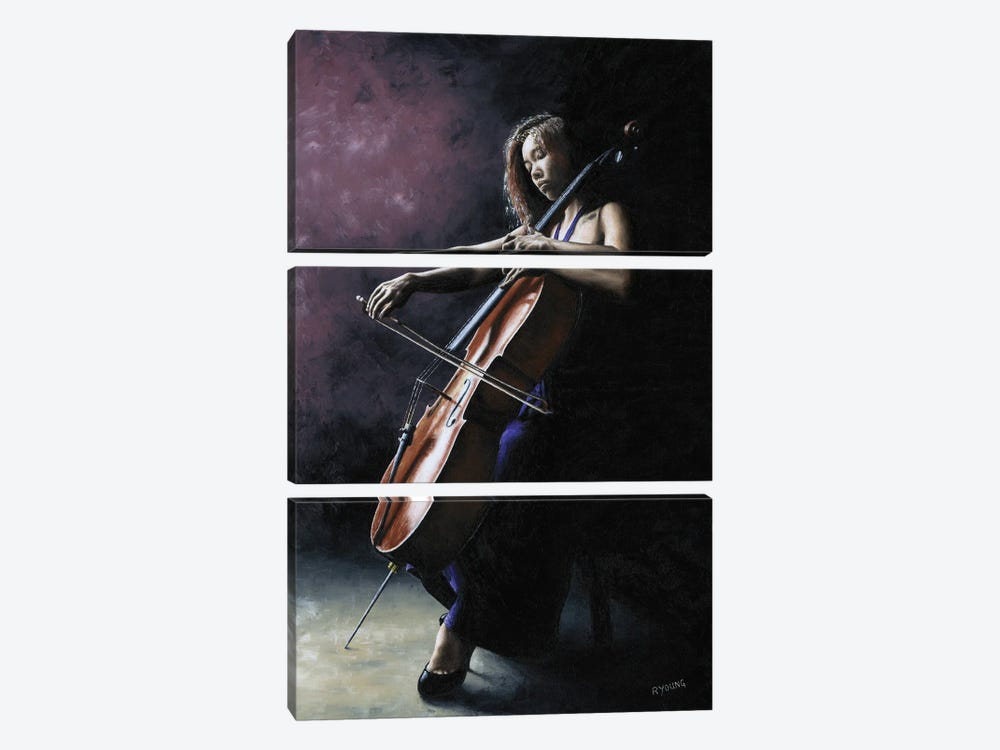 Emotional Cellist by Richard Young 3-piece Canvas Print