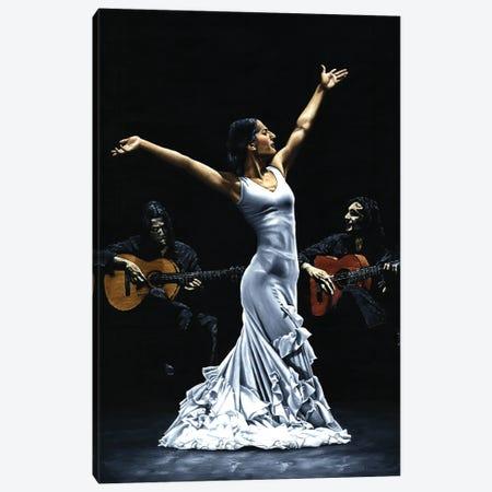 Finale Del Funcionamiento Del Flamenco Canvas Print #RYO71} by Richard Young Canvas Art