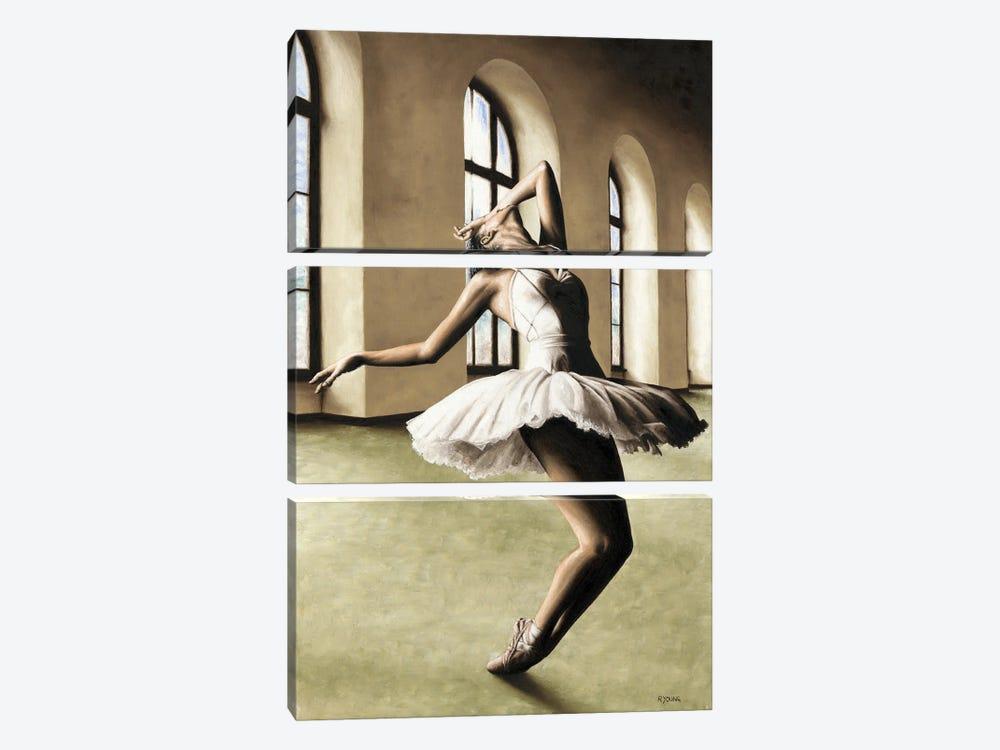 Halcyon Ballerina by Richard Young 3-piece Art Print