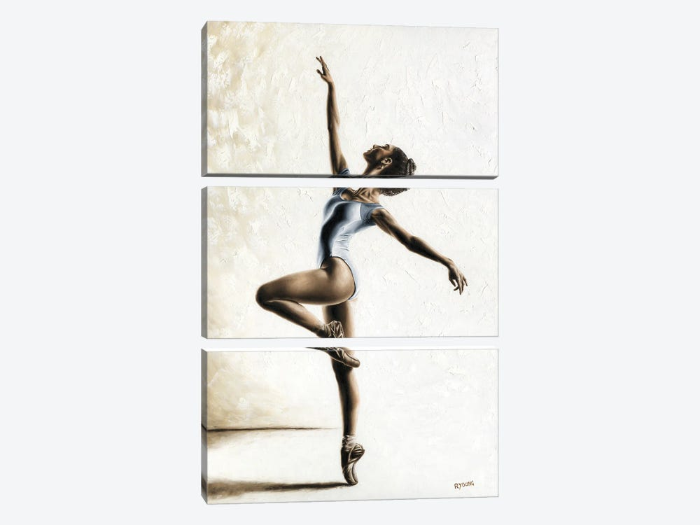 Harmony And Light 3-piece Canvas Art