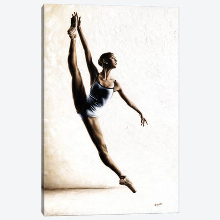Leap Of Faith Canvas Print #RYO83} by Richard Young Canvas Print