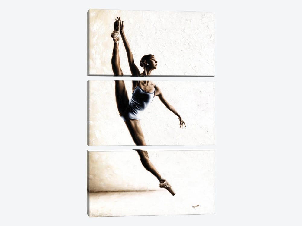 Leap Of Faith by Richard Young 3-piece Canvas Print