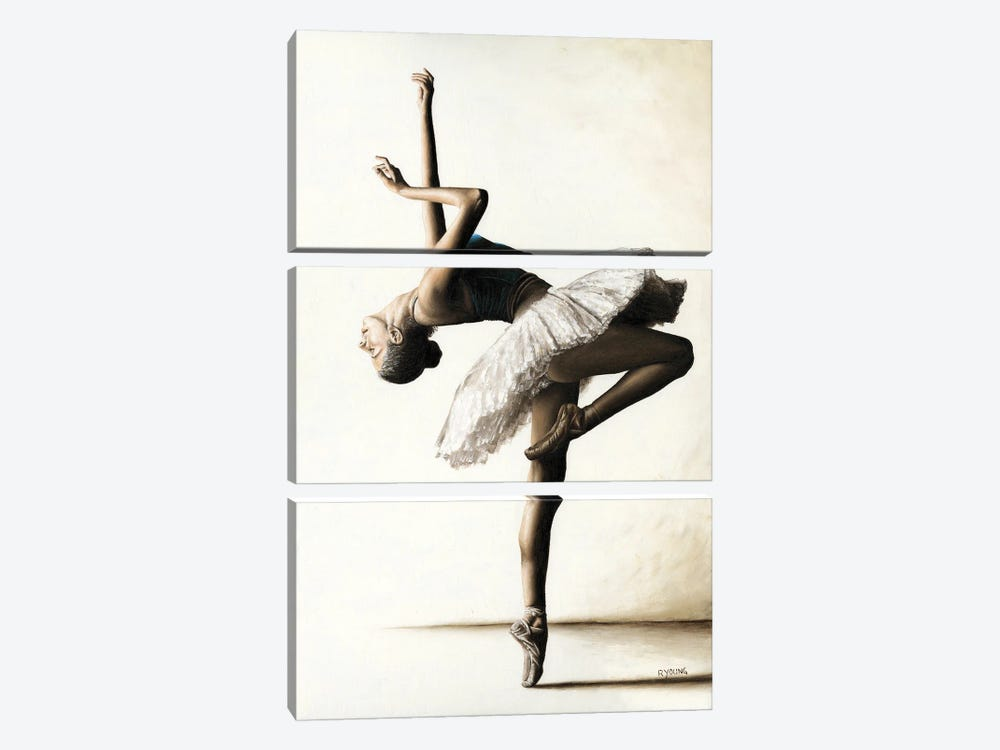 Reaching For Perfect Grace by Richard Young 3-piece Art Print