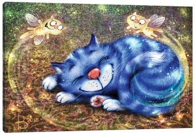 Catfairy Of Sweet Dreams Canvas Art Print