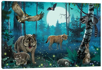 Night In The Forest Canvas Art Print